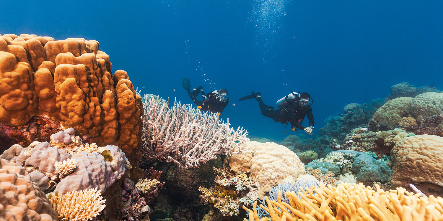 cairns-reef-credit-Tourism-and-Events-Queensland | Pacific Hotels Group