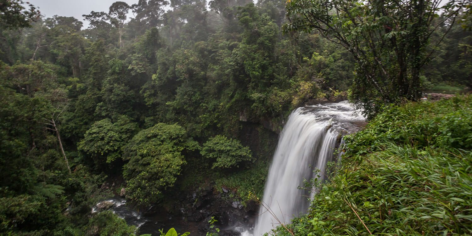 cairns-waterfal-credit-Christoffer-Collin | Pacific Hotels Group