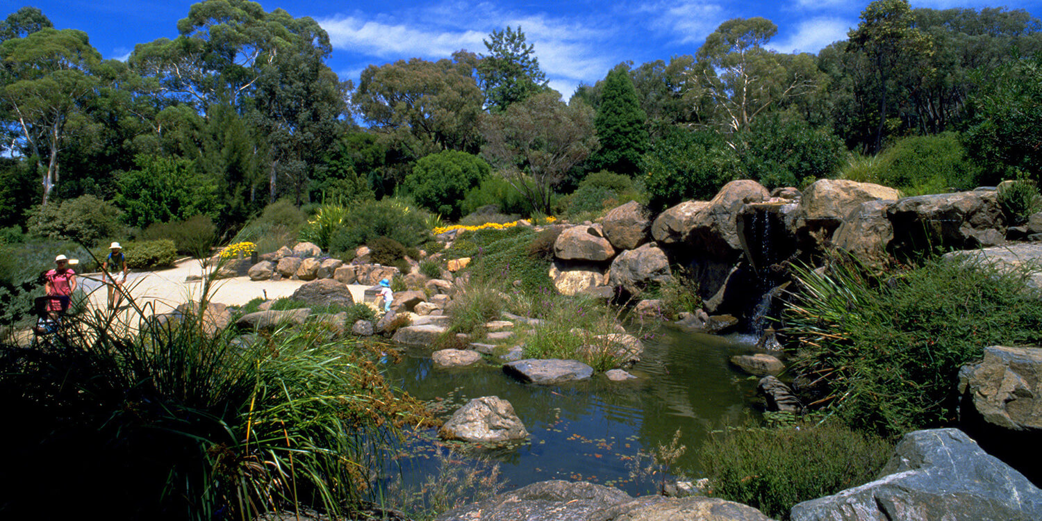 canberra-australian-national-botanic-gardens-credit-VisitCanberra | Pacific Hotels Group